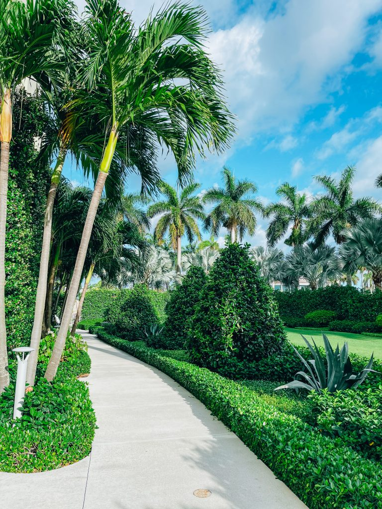 Weekend Guide to West Palm Beach - www.katiehsnyder.com